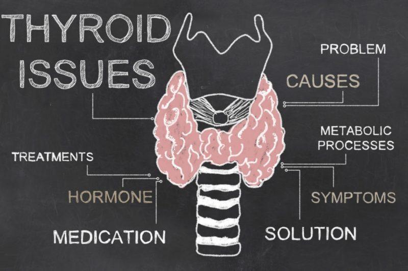 Tiroid Hastalıkları ve Fonksiyonel Tıp Tedavisi